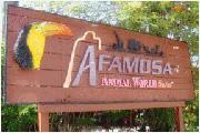 A famosa animal world safari
