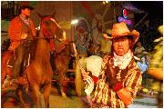 a famosa wild west show